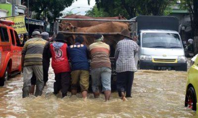 Dua Hari Diguyur Hujan, Arosbaya dan Blega Banjir